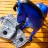 Huldigung an ein blaues Pferdchen